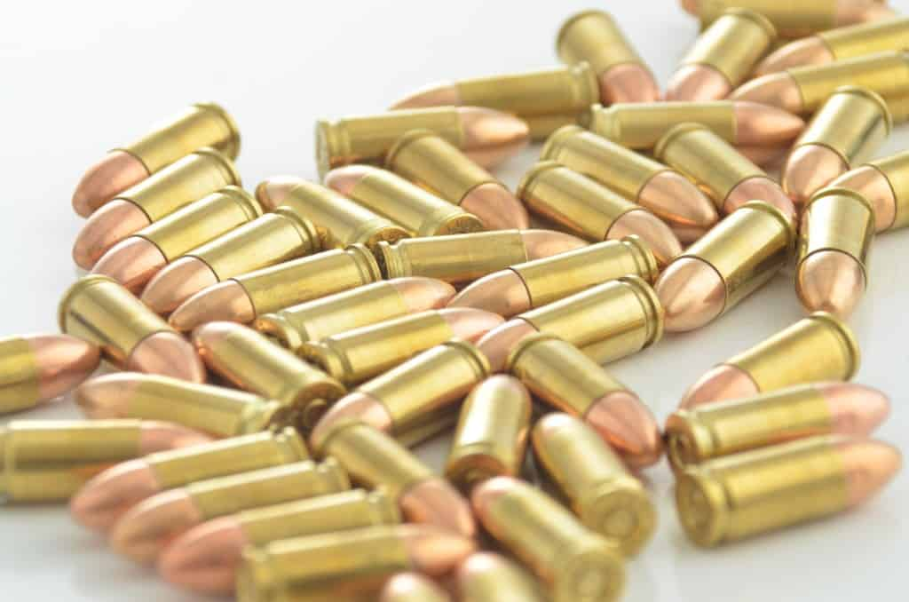 best ammo choice for survival gun