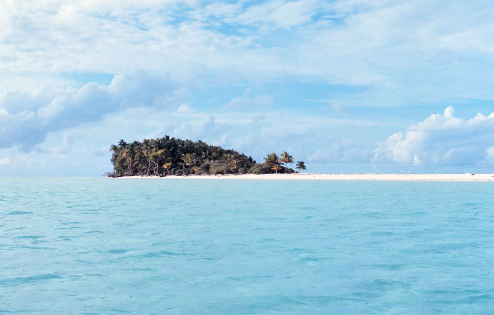 Essay About A Deserted Island