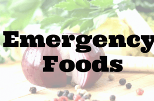 emergency foods for preppers