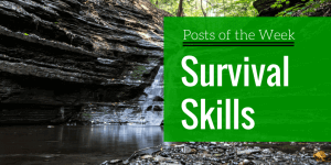 best essential survival skills