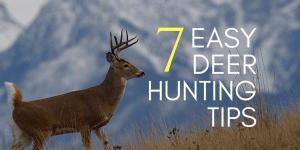7 Easy Deer Hunting Tips