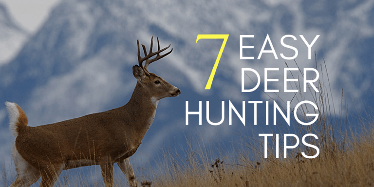 7 Easy Deer Hunting Tips