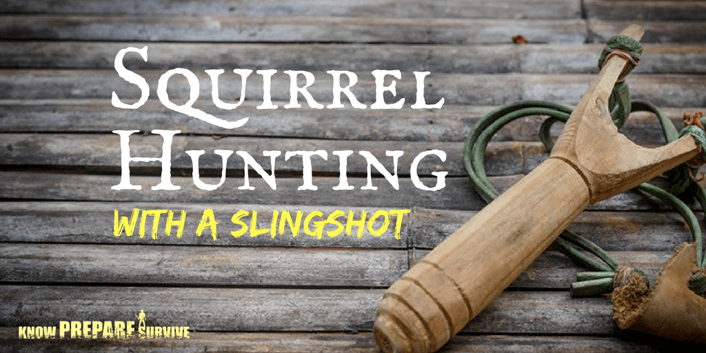 squirrel hunting with a slingshot tips