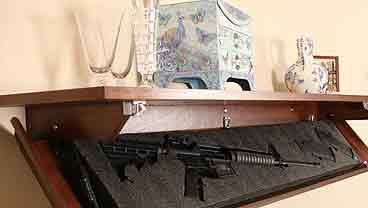 concealed gun bookshelf