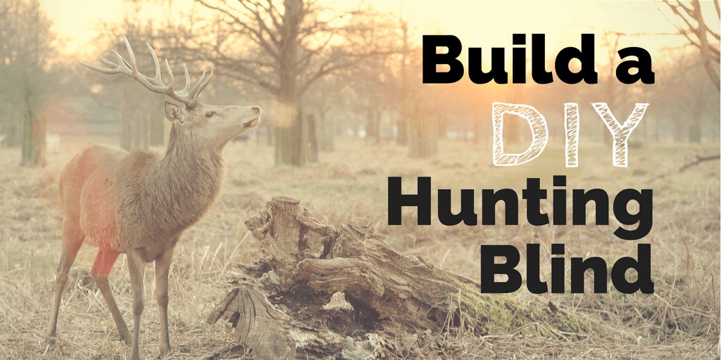 Build a DIY Hunting Blind