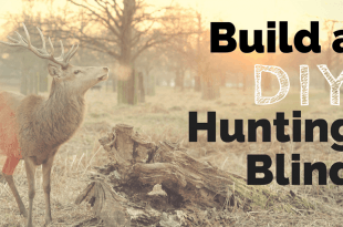 Build a DIY Hunting Blind