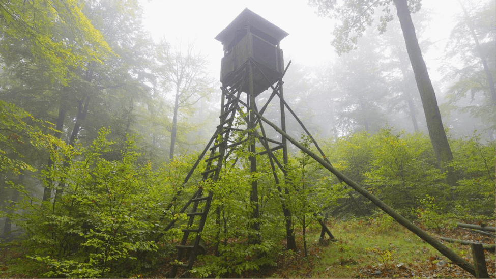 Elevated deer hunting blind