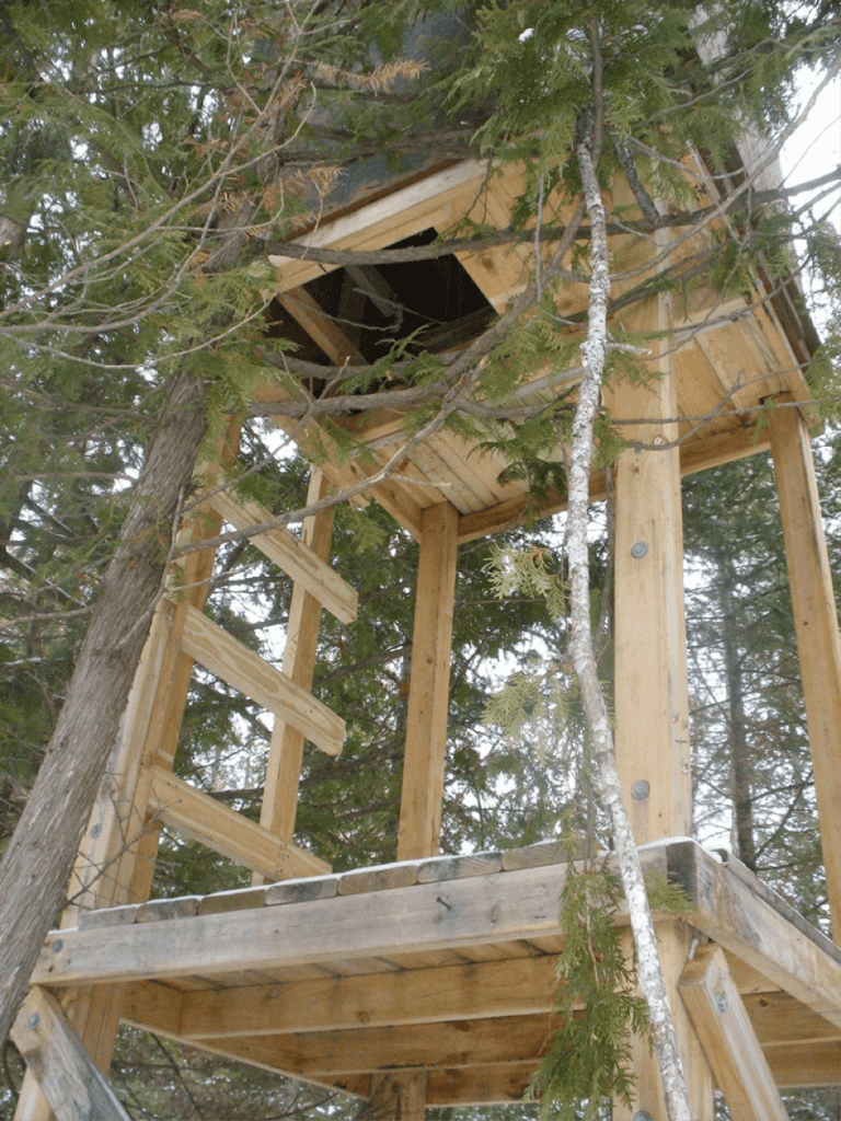 Multilevel homemade deer blind