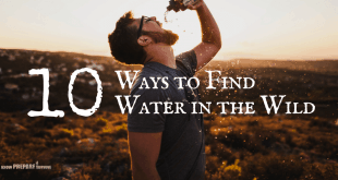 10 Ways to Find Water in the wild