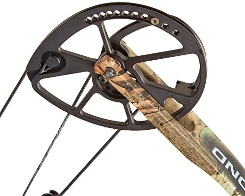 Compound bow cams
