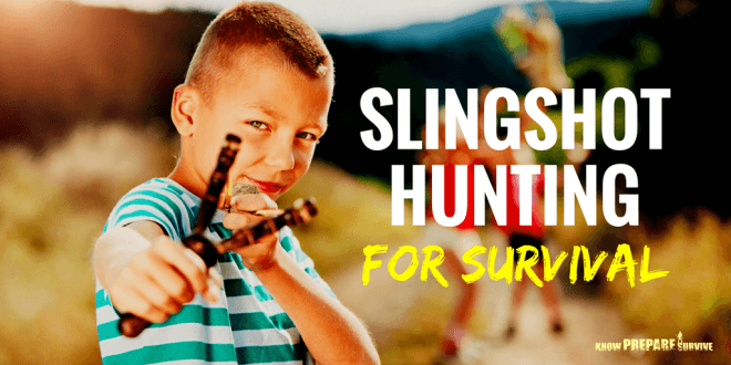 Hunting with a Slingshot for Survival