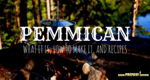 Pemmican - What it is, How to Make it, and Recipes