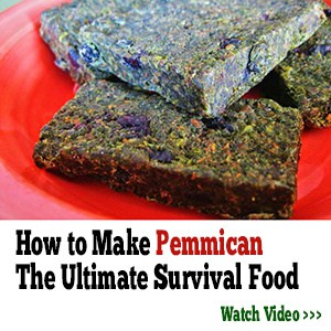 how to make pemmican video