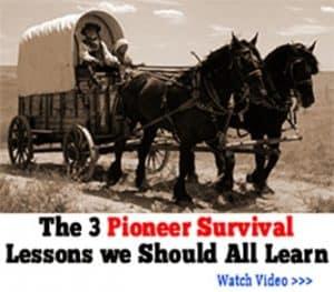 pioneer survival skills