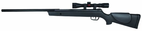 Gamo Hunter Big Cat Air Rifle review