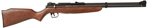 Crosman Benjamin Discovery Pre-Charged Pneumatic PCP air rifle review