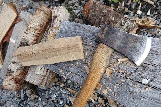 Dry Wood Inside Log