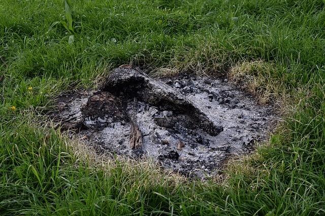 Ash Fire Stump Extinguish Wildfire