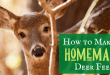 How to Make a Homemade DIY Deer Feeder