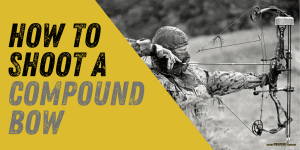 How to Shoot a Compound Bow for Beginners