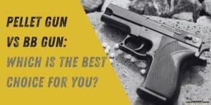 Pellet Gun vs BB Gun